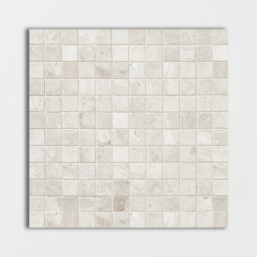 Diana Royal Honed 12x12 1x1 Marble Mosaics