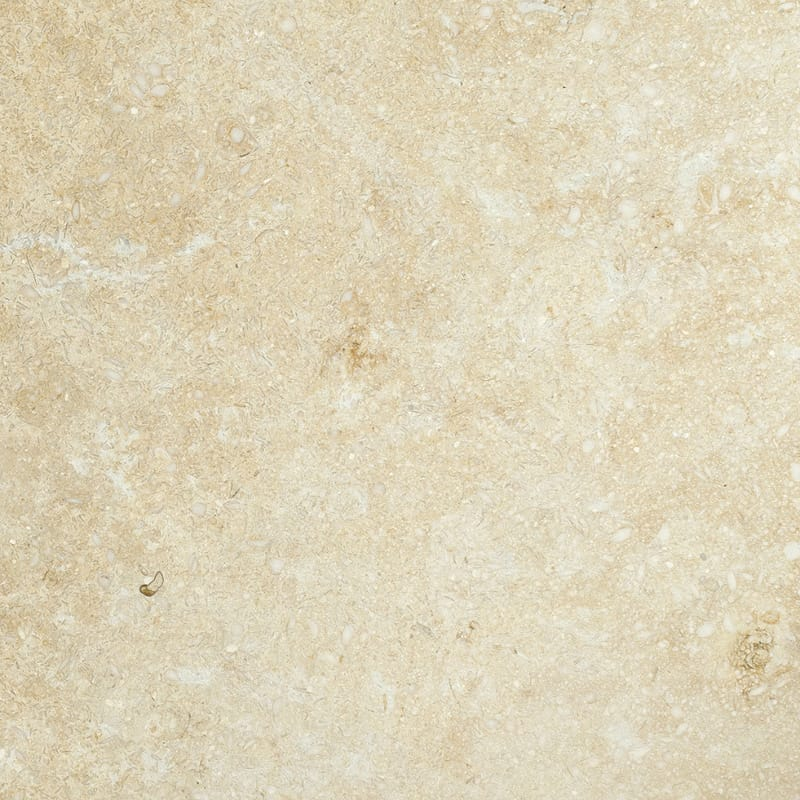 Seashell Honed Limestone Tiles 18x18 Marble System Inc