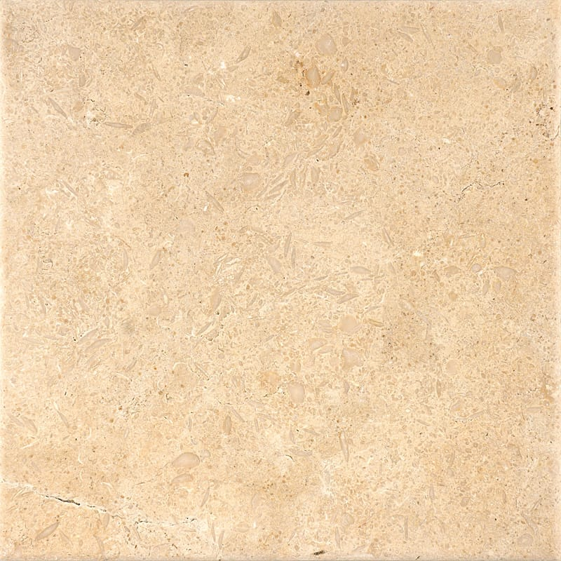 Seashell Antiqued Limestone Tiles 12x12 Marble System Inc