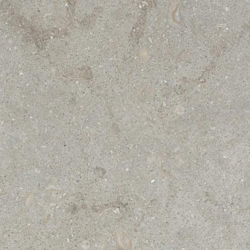 Olive Green Polished Limestone Tiles 18x18