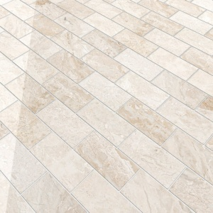 Diana Royal Polished Marble Tiles 2 3/4x5 1/2