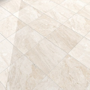 Diana Royal Polished Marble Tiles 12x12