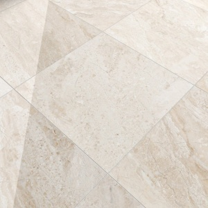 Diana Royal 3/4 Polished Marble Tiles 24x24