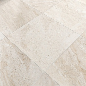 Diana Royal 3/4 Honed Marble Tiles 24x24