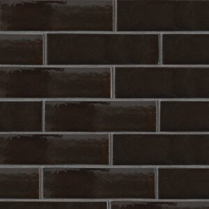 Monte Vista Gloss Ceramic Tiles 2 5/8x9 5/8