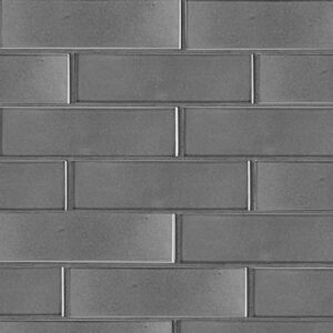 Fedora Gray Gloss Ceramic Tiles 2 5/8x9 5/8