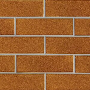 Pumpkin Field Gloss Ceramic Tiles 3 5/8x11 5/8