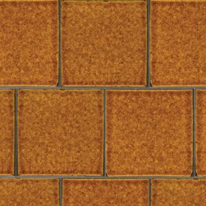 Pumpkin Field Gloss Ceramic Tiles 7 5/8x7 5/8
