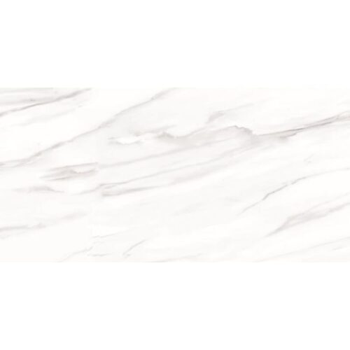Carrara Venato Semi Polished Porcelain Tiles 12x24