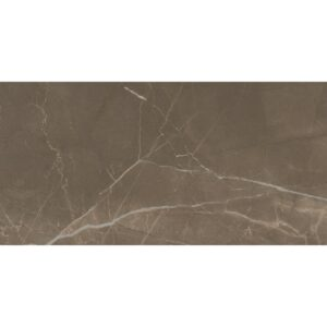 Passion Pulpis Polished Porcelain Tiles 12x24