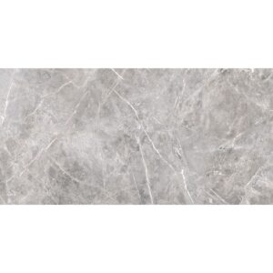 Fior Greige Polished Porcelain Tiles 24x48