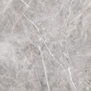 Fior Greige Polished Porcelain Tiles 24x24
