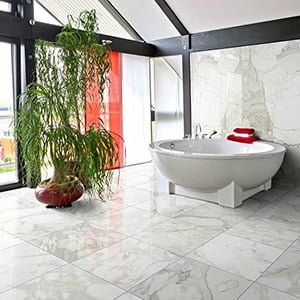 Calacatta Gold Polished Marble Collection
