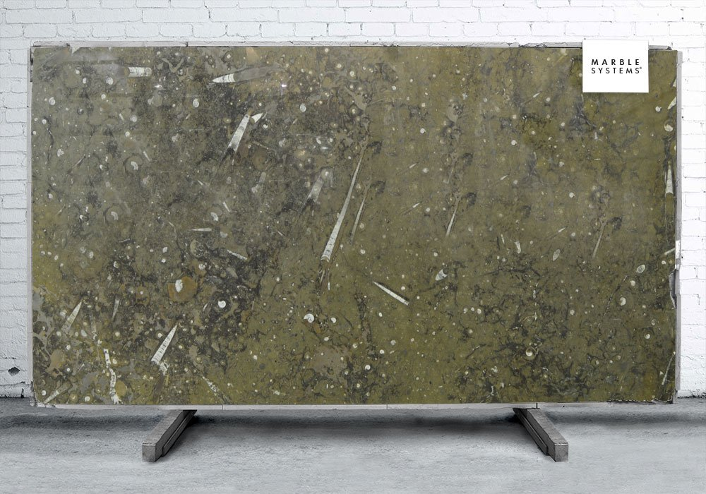 FOSSIL BROWN POLISHED MARBLE SLAB SL10694-20773